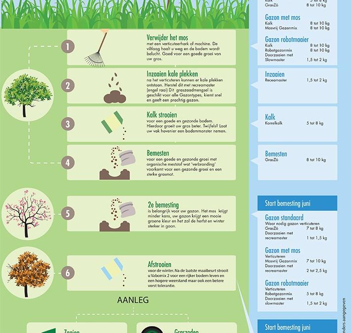 Infographic   Groener Gras Hoveniers